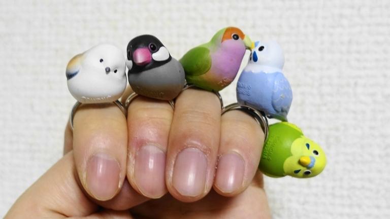 ことりんぐ全5種類(シマエナガ、文鳥、コザクラインコ、ブルーセキセイ、ノーマルセキセイインコ)を指に装着した様子